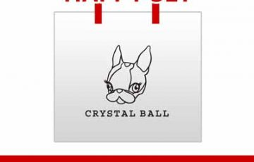 CRYSTAL BALL 2014 HAPPY SET1